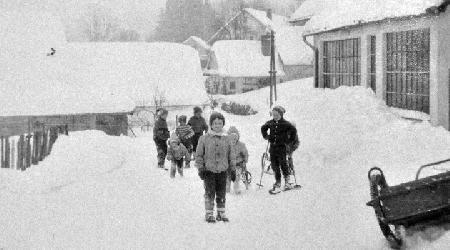 Rok 1979 - Sáňkování