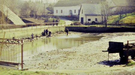 Rok 1994 - Výlov rybníka a vybagrování